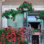 Akdeniz Balkonları