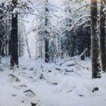 Okura Kış İçin Layıkıyla Kaybolma Kılavuzu